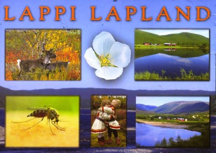 FINLAND-4a-Laponia