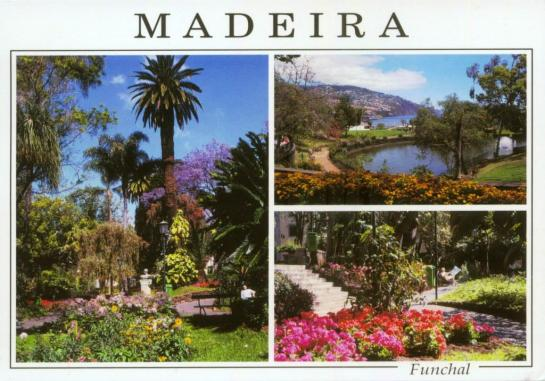 MADEIRA-2b