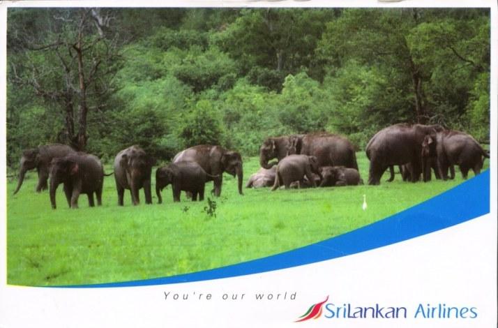 Sri Lanka-1
