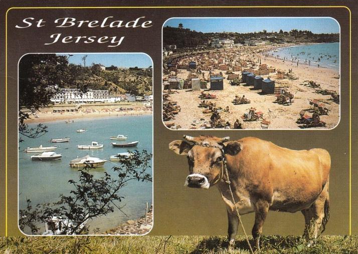Jersey-7