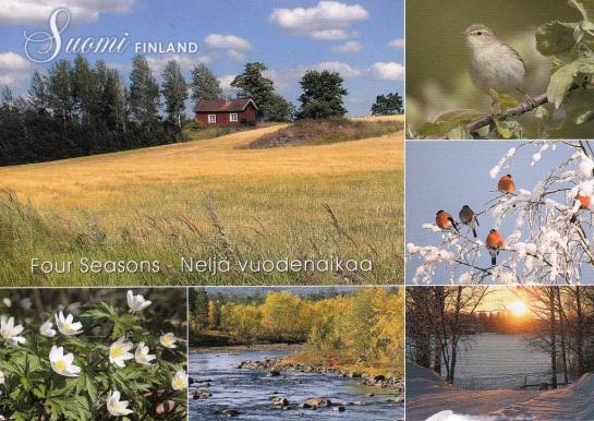 finland-42.jpg