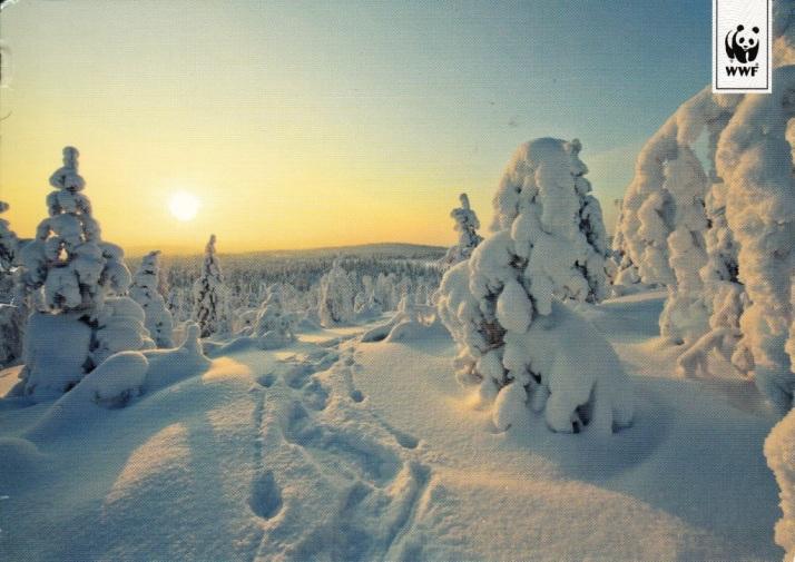 finland-48